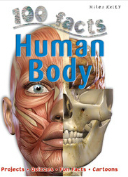 100 facts:Human Body