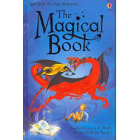 Usborne young reader:The Magical Book  L4.2